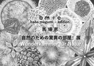馬場恵 『自然のための驚異の部屋展』