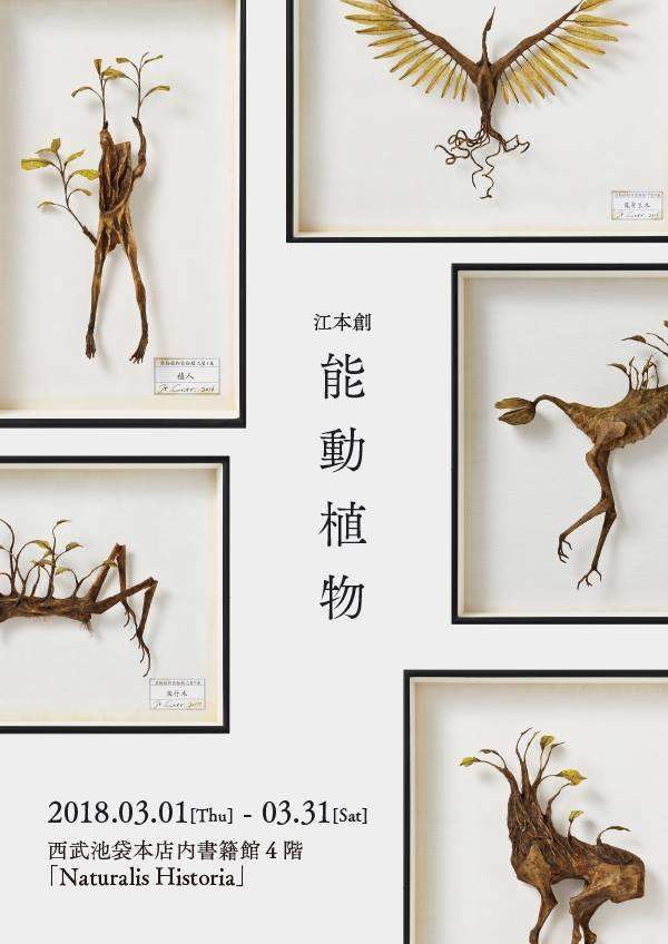 江本創『能動植物』